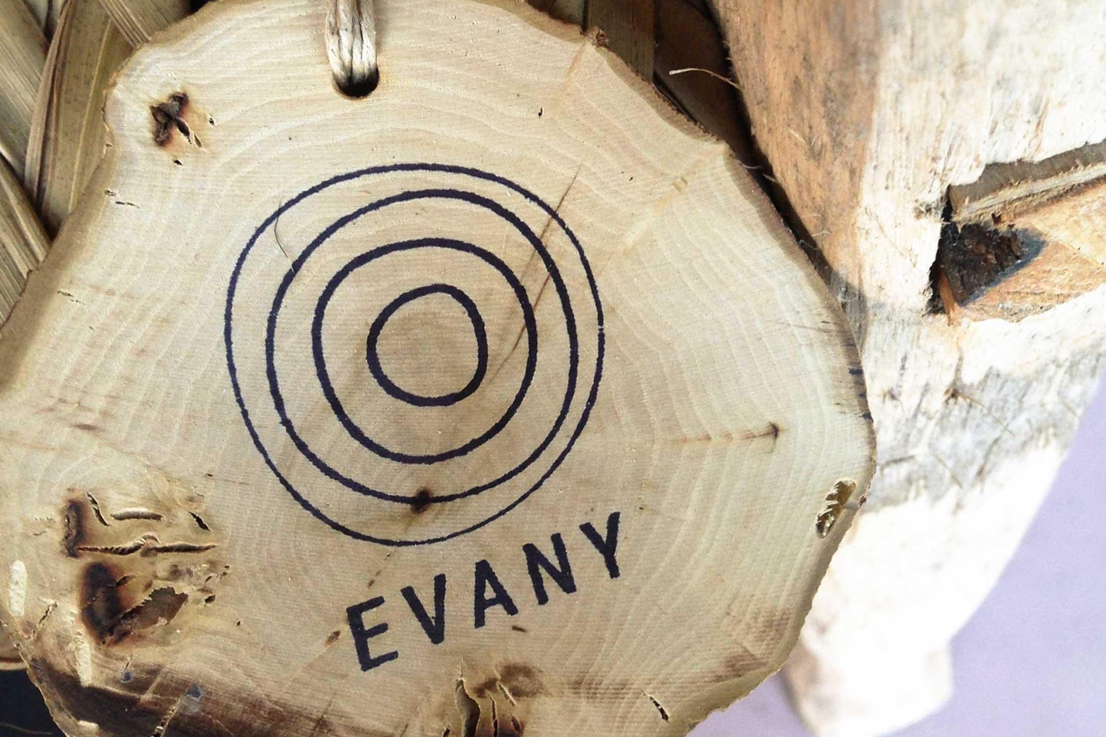 Evany Identity - logo