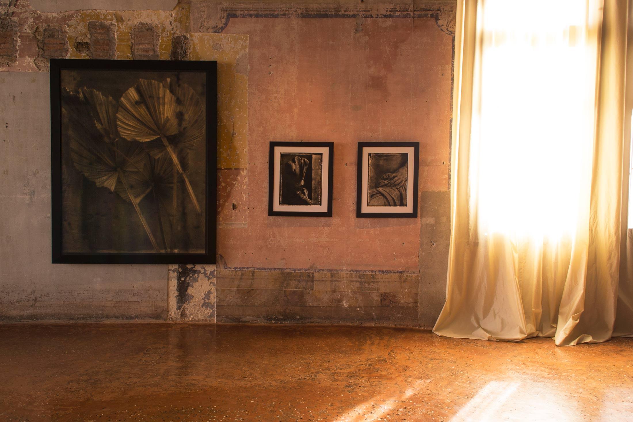 Inverno a Palazzo Fortuny - interno mostra 1