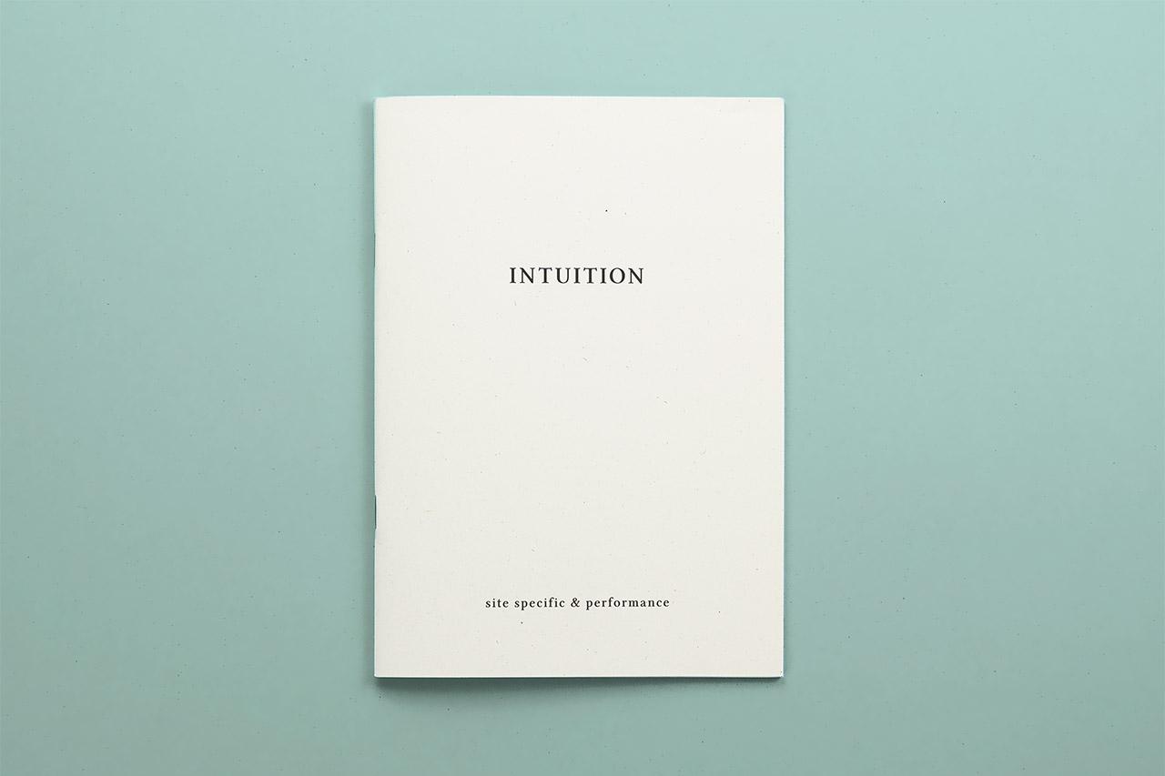 I libretti di Palazzo Fortuny - Intuition cover